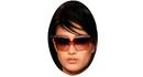 Модные солнцезащитные очки Fendi 2010
