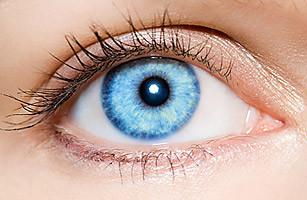Голубой цвет глаз и карий