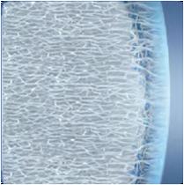 Микротонкий насыщенный водой слой линзы толщиной примерно 2-4 мкм